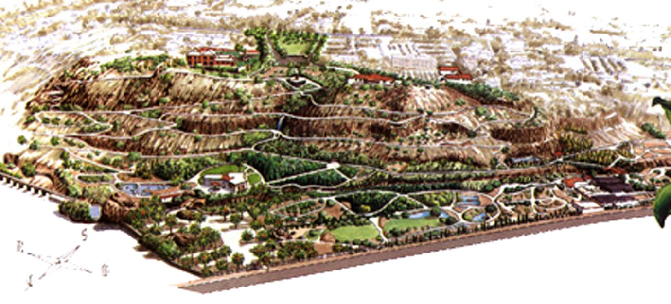 Jard n botanico canario viera y clavijo for El jardin canario