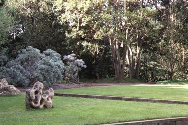 Jard n botanico canario viera y clavijo - Jardin botanico canario ...